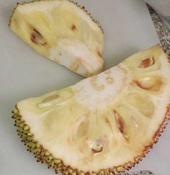 jackfruit-cut.png